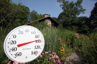 Gardening tips for the heat a p nursery - Gardening in summer heat a small survival guide ...