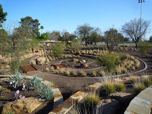 Desert Landscapes or Xeriscape