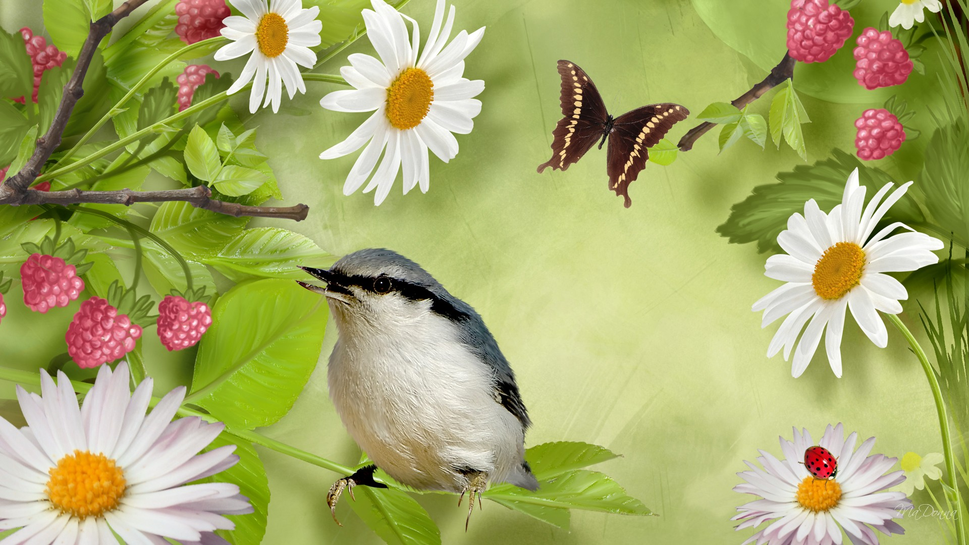 How to Attract Birds and Butterflies to Your Garden