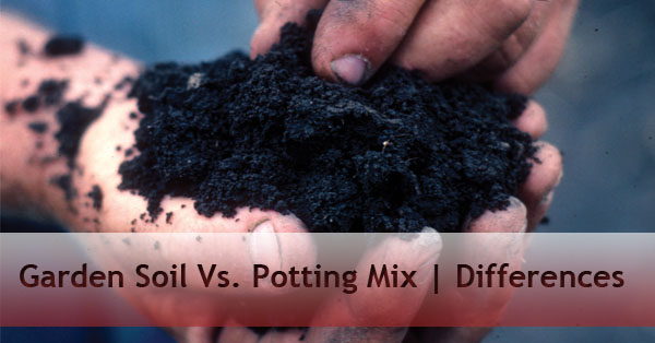 Garden and nursery archives a p nursery for Topsoil vs potting soil